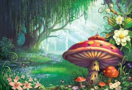 imagenes-de-bosques-infantiles-4